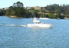Target Fishing Charters :: click here for more information