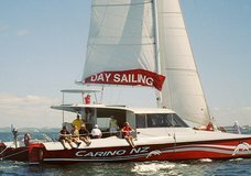 Carino Sailing and Dolphin Adventures :: click here for more information