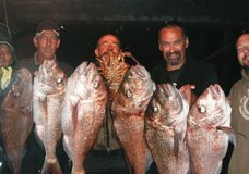 Legend Fishing Charters & Bay Cruising :: click here for more information