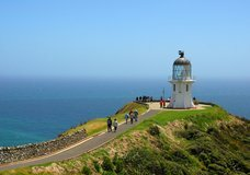 Explore NZ: Cape Reinga & Cruise Twin Tour :: click here for more information