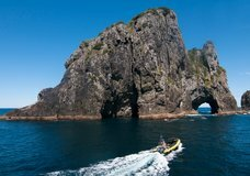 Explore NZ: Ocean Adventure :: click here for more information