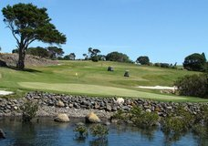Waitangi Golf Course :: click here for more information