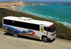 Explore - Dune Rider Cape Reinga :: click here for more information