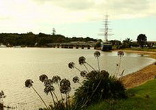 Waitangi Holiday Park :: click here for more information