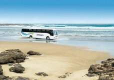 Fullers Great Sights Cape Reinga via 90 Mile Beach :: click here for more information