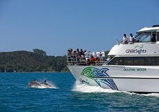 Fullers Great Sights Dolphin Cruise :: click here for more information