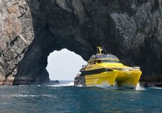 Explore NZ: Discover the Bay - Hole in the Rock Cruise :: click here for more information